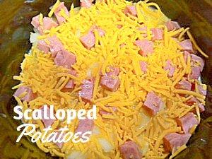 crockpot Scalloped Potato