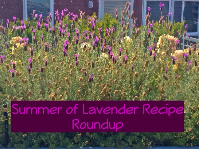 Summer of Lavender