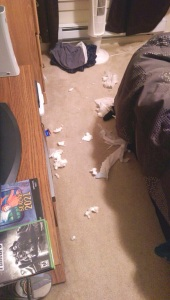 Doggie Diapers: Destroyed