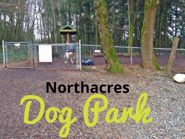 Northerners Off Leash Dog