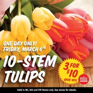 WFM_PN_ODS_Tulips